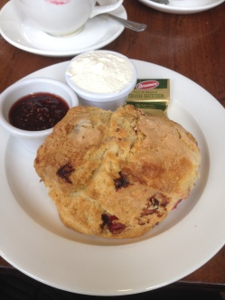 Great scone and truly excellent jam